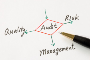 QHSE AUDITING